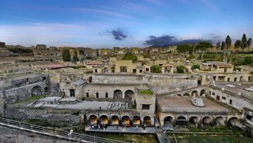 HERCULANEUM  HALF DAY (4 HOURS) BY CAR 1/3 PAX